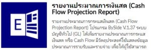ECONS Cash Flow Report