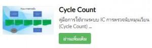 CycleCountCap